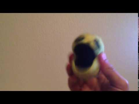 Pacman Wiggle wiggle