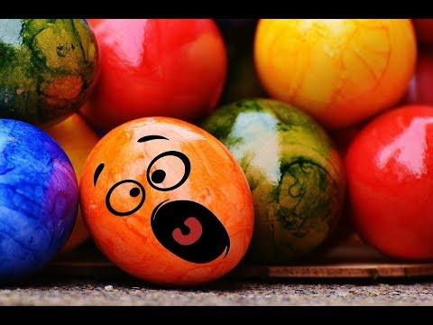 A Biker Kills Easter Bunny on Sunday Morning: Pirate Stu's Bootyful Joke of the Day #0375