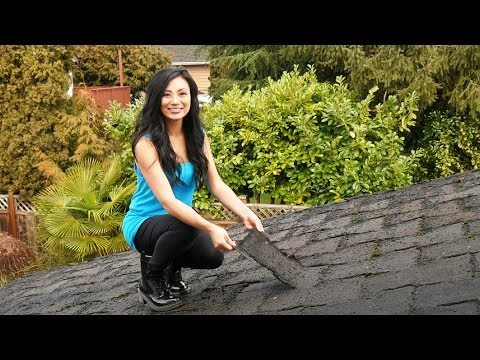 How to Replace a Shingle Roof