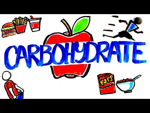 What is Carbohydrate?