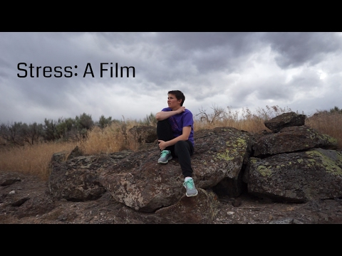 Stress: A Film by Zoe Wolff   A Wolff Pack Production