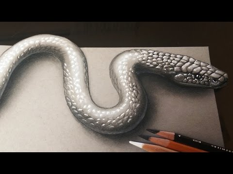 How to Draw a Realistic 3D Snake