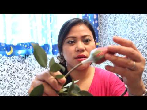 ♥ DIY: How To make Your Own Make Up Brush Guards ♥ lipglossbycehlstyles DIY Beauty Fashion Video