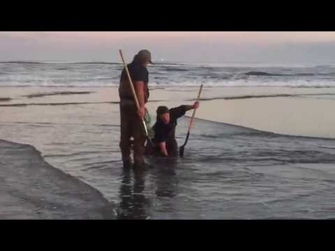 Razor Clam Digging on the North Oregon Coast