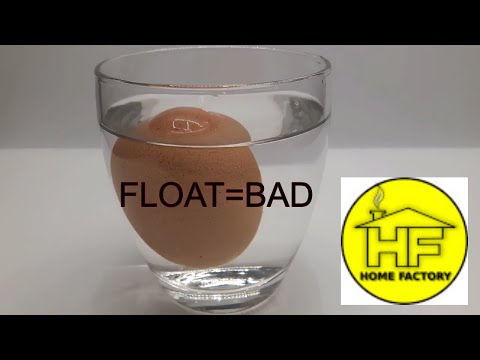 Egg water test - Good or bad eggs - how to check egg is good or bad