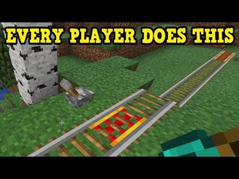 EVERY MINECRAFT PLAYER DOES THIS