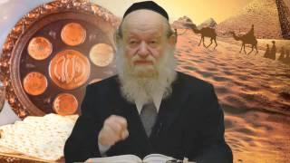 "#x202b;הרב יוסף בן פורת - למה קוראים ""הגדה"" בפסח? Hd#x202c;lrm;"