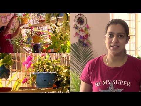 Balcony Garden Cleaning Routine   Reuse RO waste water   Help Birds this Summer  Anshu's Passion