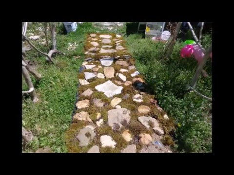 The Making of my Cobblestone Walkway