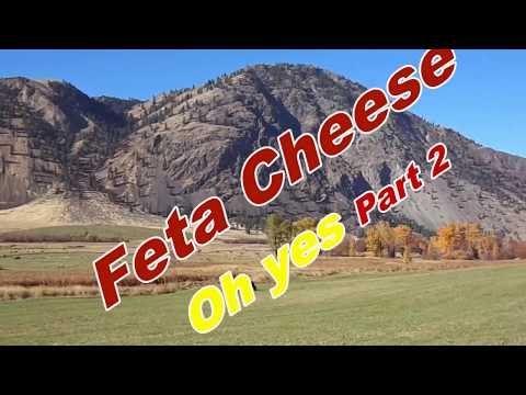 A FETA CHEESE RECIPE FOR BEGINNERS. FUN TO MAKE AND DELICIOUS