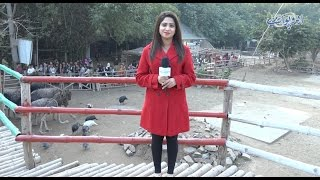 Rana Resort Lahore Ki Sair