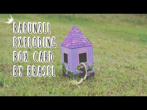 Rapunzel Exploding Box Card by Brasel
