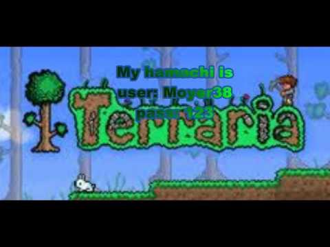 Terraria online multi player server  (Hamachi)