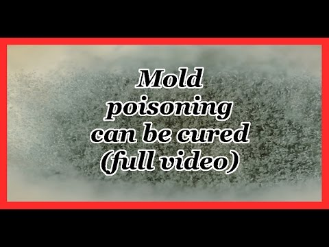 Mold Poisoning Can Be Cured (full video)