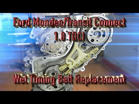 Ford Mondeo/Transit Connect 1.8tdci wet timing belt replacement