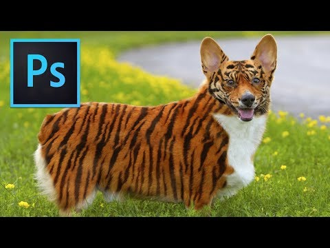 Photoshop Tutorial: Transform Animal Skin into Tiger Skin