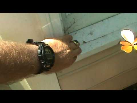 HandyANDY reviews hot to repair rotted masonite siding & trim in martins landing roswell