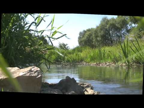 WALPHY - un vrai projet d'avenir pour nos rivière wallonne