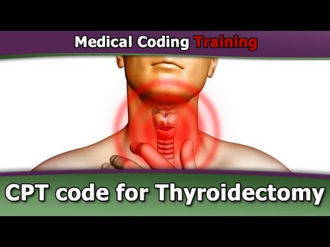 CPT Code for Thyroidectomy — CPT Coding Guidelines