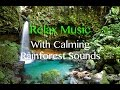 Relaxing Music Playlist With Calming Rainforest Sounds