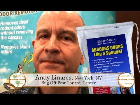 Removing dead rat odor - EarthCare Odor Removers