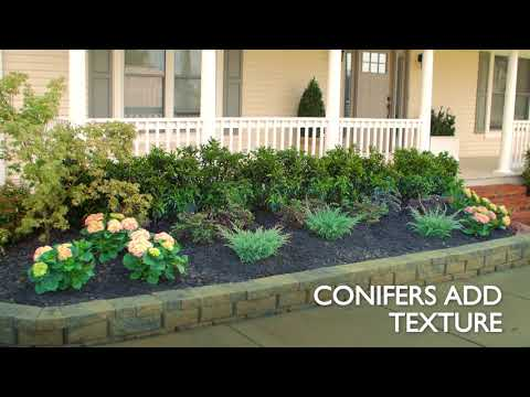 How to Plant a Garden Bed for Curb Appeal