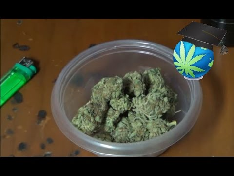 Common Weed Denominations Prices