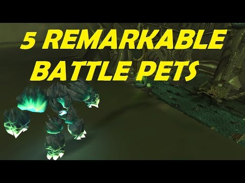 5 Remarkable Battle Pets - Easy to Farm - World of Warcraft
