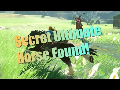 Breath of the Wild Guides - Secret Horse! How to tame the horse named Lord of the Mountain!