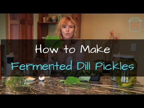 How to make Naturally Fermented Dill Pickles - Live Cultured Pickles!
