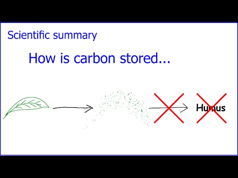 How is carbon stored in the soil?