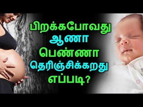 பிறக்கபோவது ஆணா பெண்ணா தெரிஞ்சிக்கறது எப்படி? | Tamil Health Tips | Home Remedies | Latest News