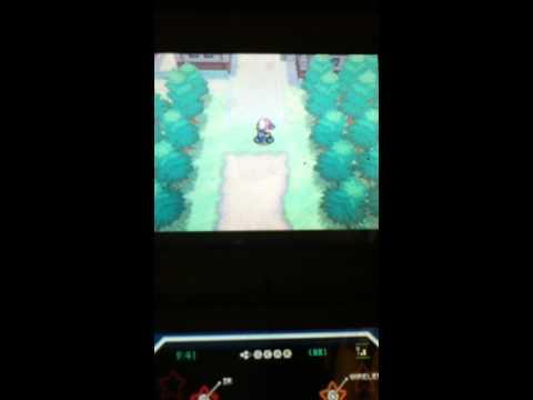 How To Obtain Eggs Fast in Pokemon black