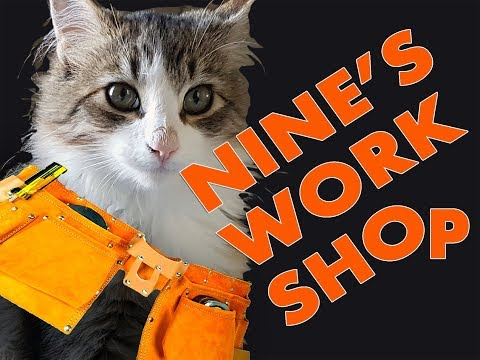 Repurposing Satellite Dish Indoor Cats Entertainment. Keep Birds Happy 2018