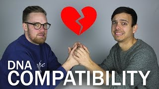 Should We Break Up? (DNA COMPATIBILITY TEST)