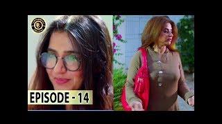 Aangan Episode 14 - Top Pakistani Drama
