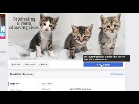 Donate Button on Facebook