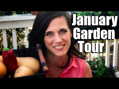 January Garden Tour & Updates on Garlic, Lettuce & Flower Tower, Edible Deck Containers