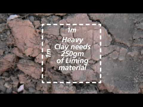 Soil PH Level - Jimboomba Turf