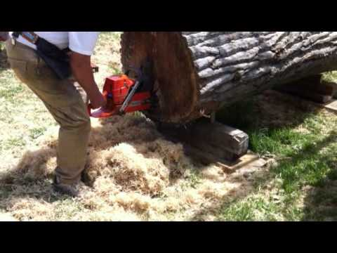 Robert Cutler's Cutting 8ft log lengthwise with handheld chainsaw