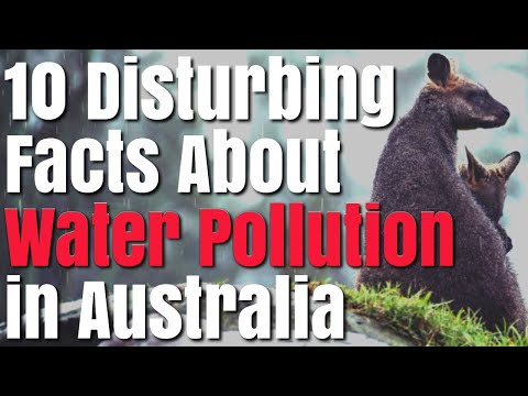 10 Disturbing Facts About Water Pollution in Australia