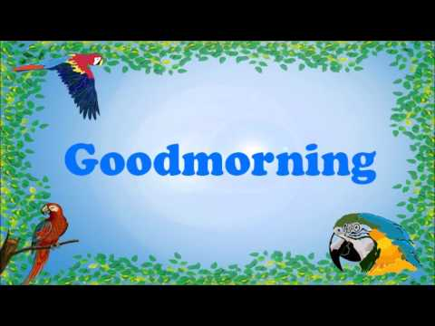 Teach your Parrot to say Good Morning!