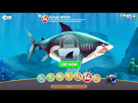 ALL XXL SHARKS UNLOCKED - Hungry Shark World
