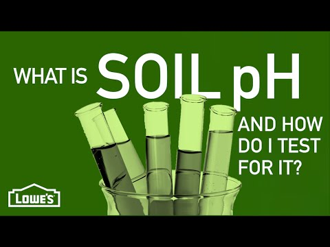 What Is Soil pH & How Do I Test For It? | Gardening Basics w/ William Moss