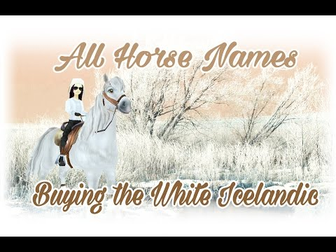 ALL HORSE NAMES buying the white icelandic Star Stable