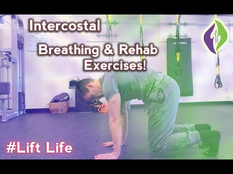 Intercostal Muscle Strain Treatment Exercises for Rib Cage