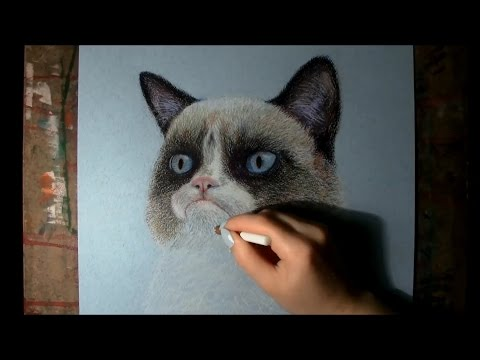 Speed drawing: Grumpy Cat