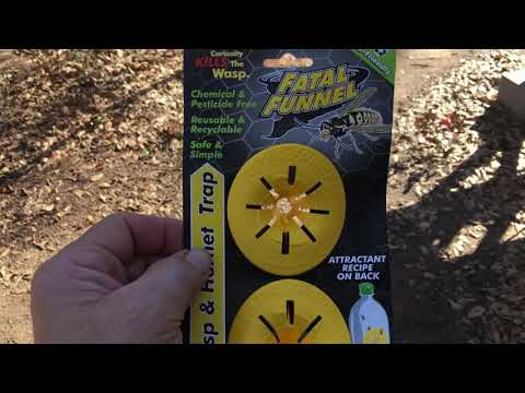 Fatal funnel wasp and hornet trap. Harbor freight.