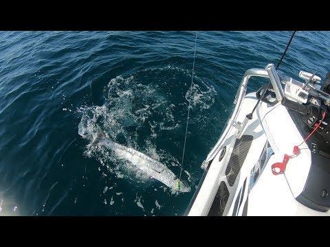 13 MILES OFFSHORE! on a Yamaha WaveRunner Fishing TUNA Florida Keys I Catch N Cook