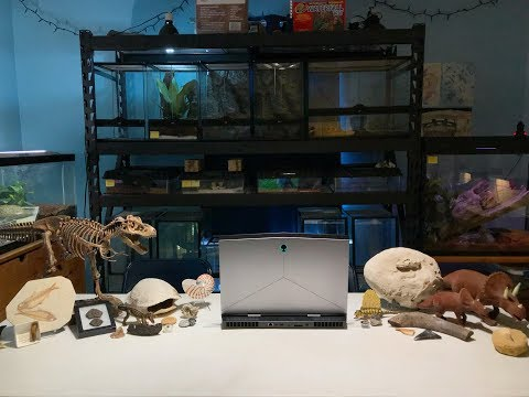 Keeper Talk, LIVE: TEGUS and TYRANNOSAURS with Co-host Michael Chiappone | January 2018